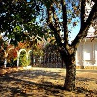 Осень в монастырском дворе :: Людмила