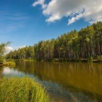 на озере :: Дмитрий Сдобин