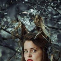 MDL :: Adeline Hoffman