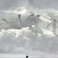 Наверное,есть Бог и у Пингвинов ..... :: Aleks Ben Israel