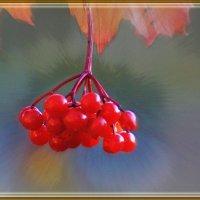 Осень :: Cerg Smith