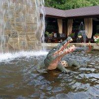 Добрый крокодил :: nika555nika Ирина