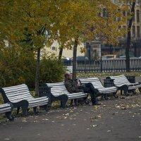 Одинокая Осень....... :: Владимир Питерский
