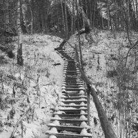 Лестница в :: Александр Решетников