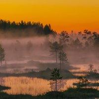 Перед восходом :: Альберт Беляев