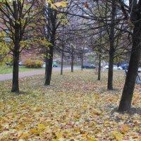Осень в сквере :: Агриппина