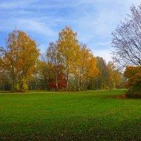 Ах,этих листьев хоровод... Он разноцветьем ослепляет... :: Galina Dzubina