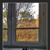 из больничного альбома :: Дмитрий Анцыферов