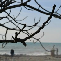 пляж Хоста :: Evsta Evsta