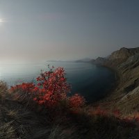 В осеннем тумане пропал Карадаг... :: viton