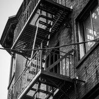 Вверх по лестнице, ведущей вниз :: Владимир Gorbunov