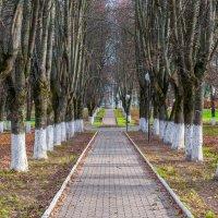 В городском парке :: Андрей Куприянов