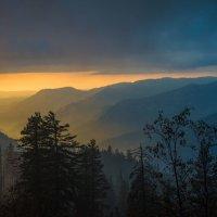 Лучше гор могут быть... :: Алена Потураева