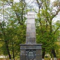 Памятник борцам за советскую власть - жертвам белогвардейского мятежа в Ярославле. :: Galina Leskova