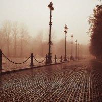 Чугунная мостовая :: Георгий Вересов