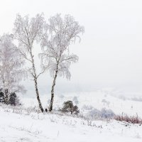 Приход зимы :: Анатолий Иргл