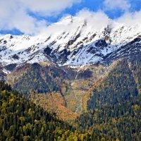 Со всех сторон Рицу окружают высокие горы, вершины которых даже летом покрыты снегом :: Елена Павлова (Смолова)
