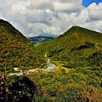 Абхазия. Красивый вид на горы и горную речку :: Елена Смолова