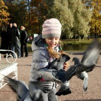кормление птиц :: Мила Данковцева