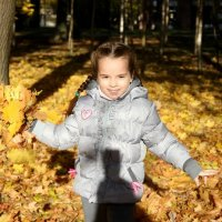 Осень в парке :: Мила Данковцева