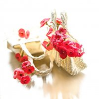 цветы мoлочая :: Svetlana Galvez