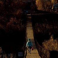 Мост :: Алёна Колесникова