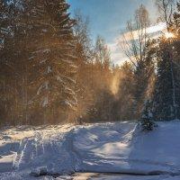 Снежный вихрь :: vladimir