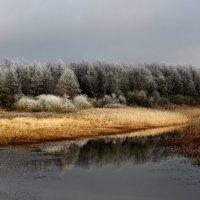 В ожидании зимы :: александр пеньков