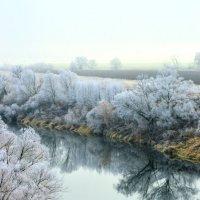 Ока в тумане :: Светлана Рос