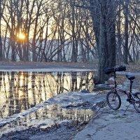Садится солнце рано в ноябре... :: Александр Орлов
