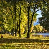 Осень у городского озера :: Игорь Вишняков