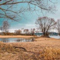 Осенние берега. Продолжение :: Андрей Куприянов