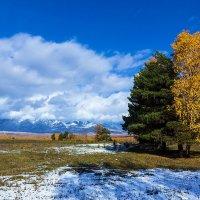 Осенние краски :: Анатолий Иргл
