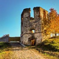 старая башня :: юрий иванов