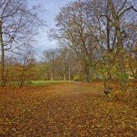 Осень уходит... Красавица осень прощается с нами.... :: Galina Dzubina