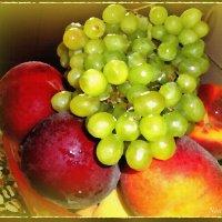 Осенние витамины :: Лидия (naum.lidiya)