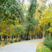 В осеннем парке...5 :: Тамара (st.tamara)