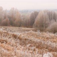 Осенняя пастель.. :: Наталья Юсова (Natali50)