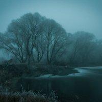 Туманные сумерки :: Алексей Кошелев