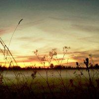 закат на фоне тумана :: ВладиМер