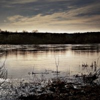 река Юг :: ВладиМер