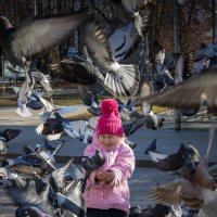 Кормить голубей :: _NIGREDO_ _