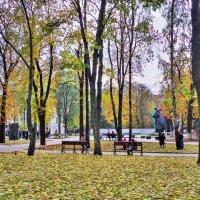 в парке :: юрий иванов