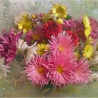 Осенние цветы :: Эля Юрасова