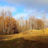 Осенняя фотозарисовка. :: Борис Митрохин