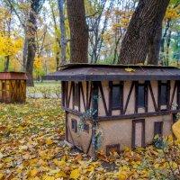 Осень в Чистяковской роще, ноябрь 2015 :: Таня Харитонова