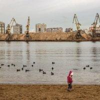 Дитя большого города :: Elena Ignatova
