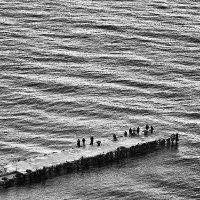 Песчинки в море :: Игорь Бурченков