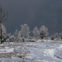 Туман поднялся над землёю,но небо спрятано ещё... :: Александр Попов