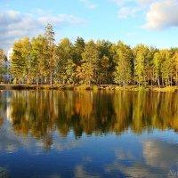 Отражение осени в воде :: Лидия (naum.lidiya)